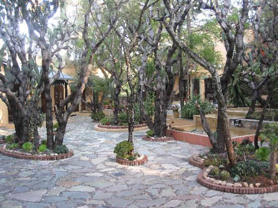 Quinta Las Acacias : the beautiful courtyard