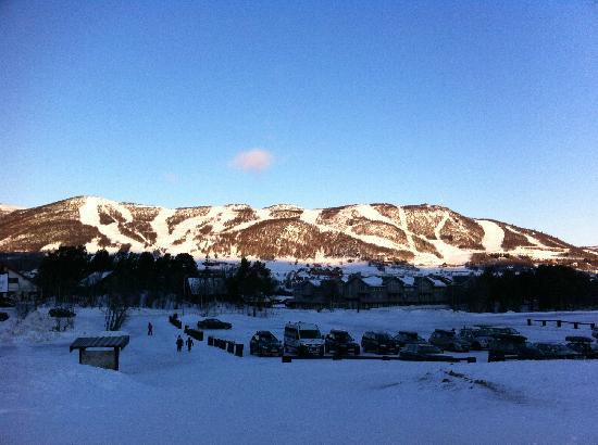 Vestlia Resort: Skigebiet