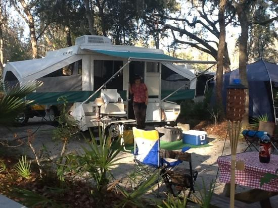 Yellow Jacket RV Resort: beautiful canopy.