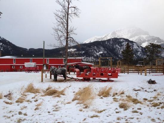 Banff, Canada: Sleigh & Property