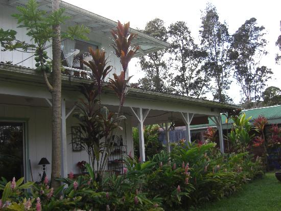 Lava Tree Tropic Inn: Ohana