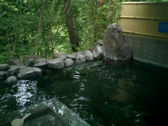 Hotaka View Hotel: 森林浴の露天風呂最高です