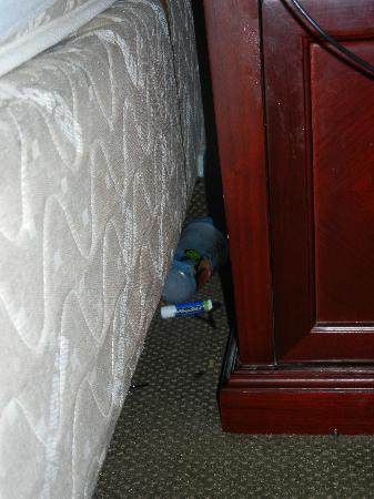 Destiny Palms Hotel Maingate West: Chapstick & sippy cup found between the bed and the nightstand.Seriously?