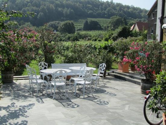 Hotel Garni Weinberghof & Weingut Lagler: Une partie de la terrasse