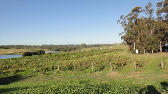 Hunter Valley Resort: View to a small part of the property