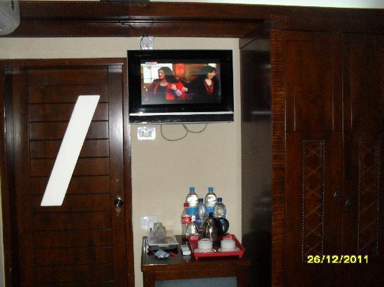 Manisa Hotel: chambre vu télé