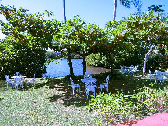 The Waterside Bentota: The garden