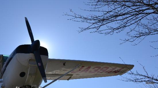 Shibayama-machi, Ιαπωνία: 電気でプロペラが回ります