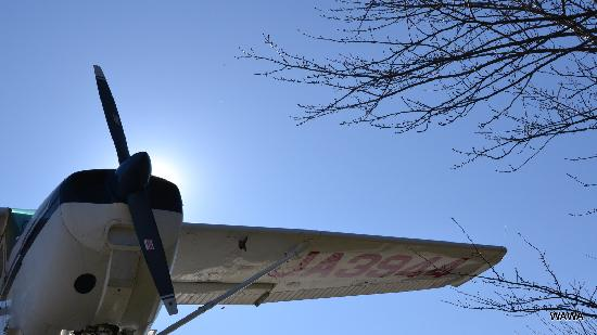 Shibayama-machi, Japão: 電気でプロペラが回ります