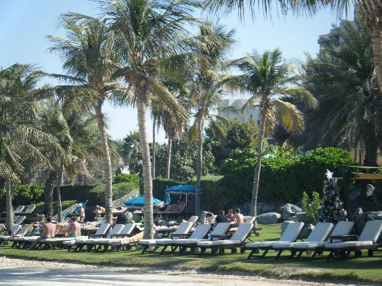 Appartments 3 St 246 Ckig Picture Of Ja Palm Tree Court Dubai Tripadvisor