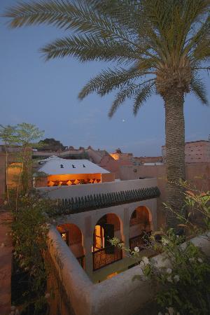Riad Palmier: Vue Terrasse Palmier