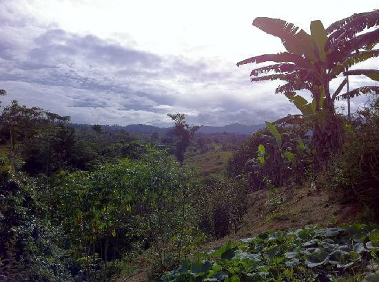 Finca Rio Perla: a taste of the landscape