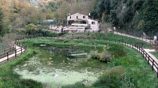 Cascata delle marmore centro direzionale didattico del for Cascate in giardino