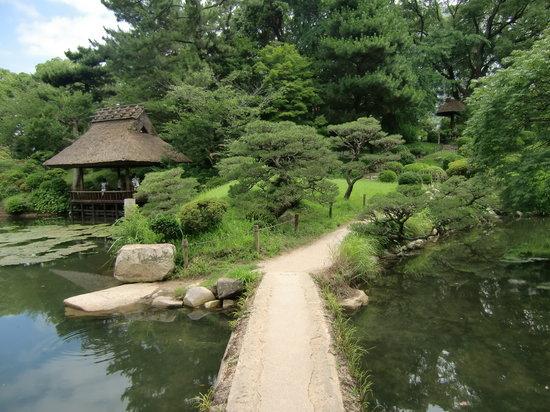 هيروشيما صورة فوتوغرافية