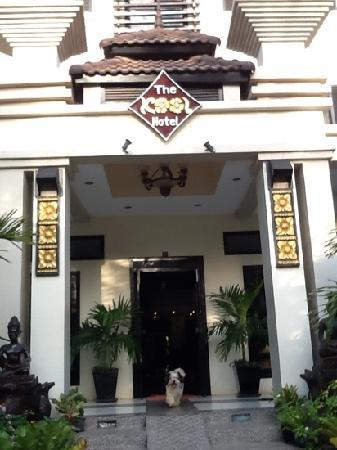 The Kool Hotel: kool