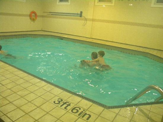 Quality Inn Downtown Inner Harbour : Pool was small but warm