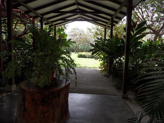 Hotel Aserradero: looking toward huge back garden