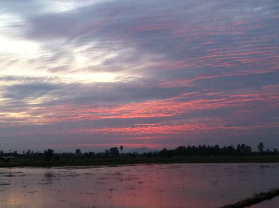 Family Homestay Little Heaven: Beautiful sunset over the rice fields