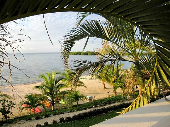 Turquoise Bay Dive & Beach Resort: Vue de Turquoise Bay