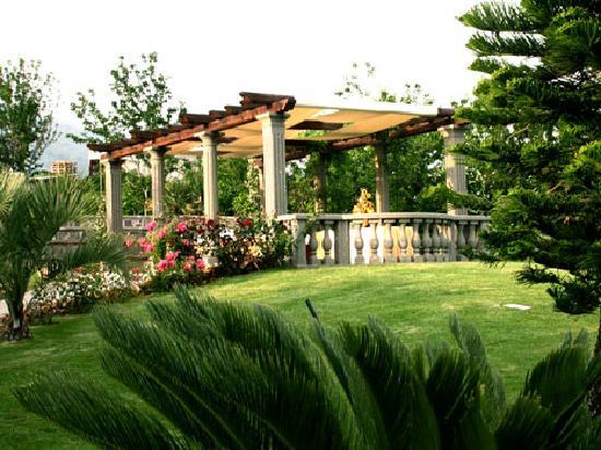 Il giardino esterno foto di paradiso ricevimenti - Il giardino di mezzanotte ...