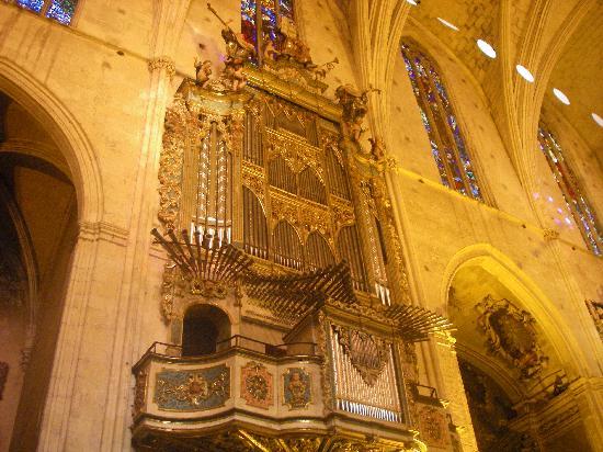 Basilica de Sant Francesc : lo stupendo organo