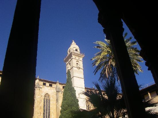 Basilica de Sant Francesc: altra vista dal cortile