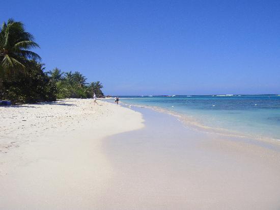 Playa Flamenco: Flamenco o Flamingo Beach