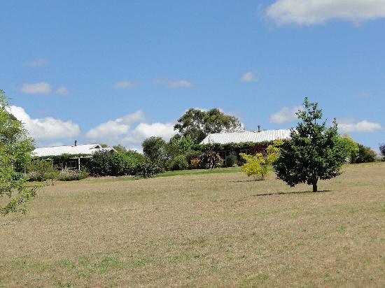 Big Brook Cottages: Lodge grounds