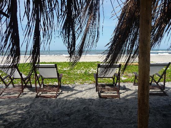 Merecumbe Hotel : The Beach