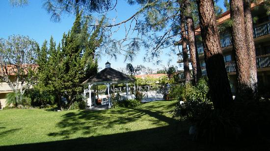 Palm Garden Hotel: grounds