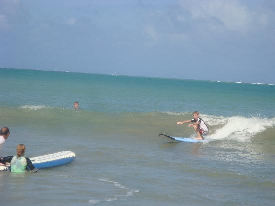 East Island Surfing Adventures : catch a wave and you're sittin' on top of the world