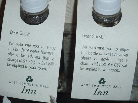 West Edmonton Mall Inn: Water in the room.