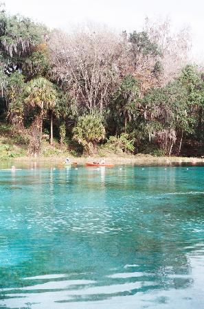 Rainbow Springs State Park: Kayakers cruising the Rainbow River