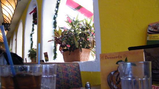 El Torito Mexican Restaurant: interior