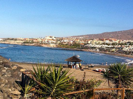 CLC Paradise: Sea front