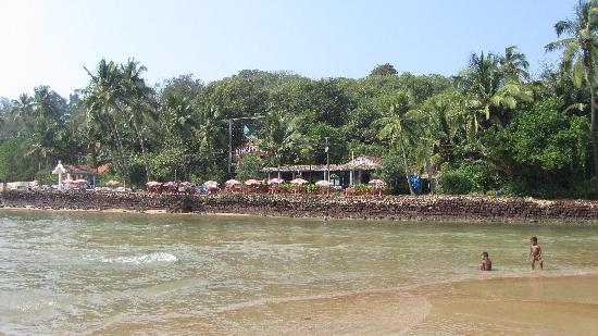Baga, الهند: baga beach