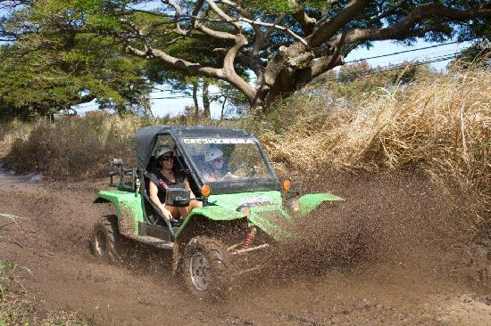 Green Zebra Adventures Maui Day Tours : Getting Dirty!!