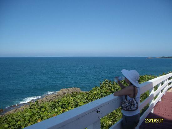 Arecibo: Atlántico