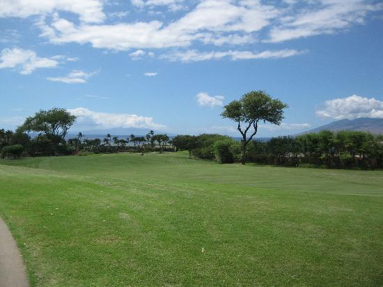 Wailea Old Blue Course: Looking back down #3 fairway