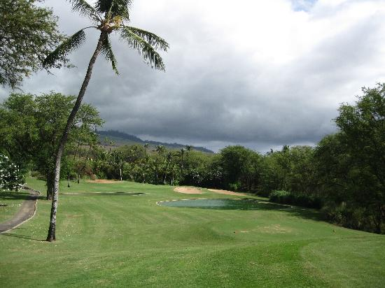 Wailea Old Blue Course: #9