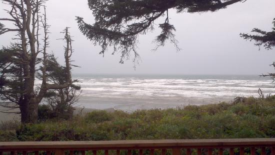 Copalis Beach, WA: View from deck of Cabin 17