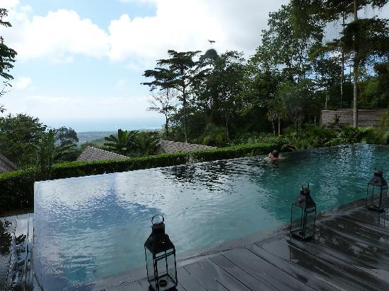 Oxygen Jungle Villas: Ahh... infinity pool