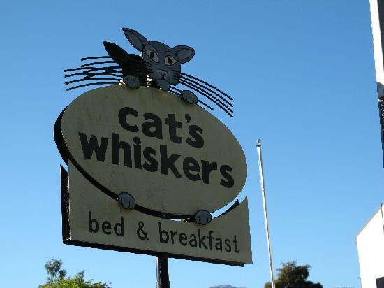 The Cat's Whiskers Bed & Breakfast: Cute sign