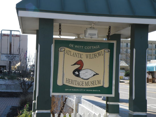 ‪Atlantic Wildfowl Heritage Museum‬