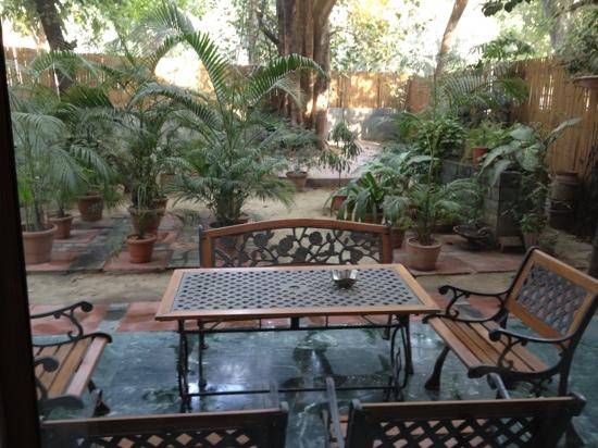 Saubhag Bed and Breakfast: Saubhag's patio