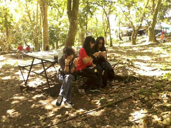 Picnic Grove: not enjoying ourselves...