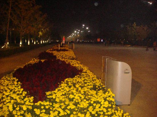 Olympic Park: Park
