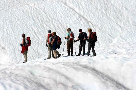 St. Elias Alpine Guides: Day Hike on Root glacier with SEAG