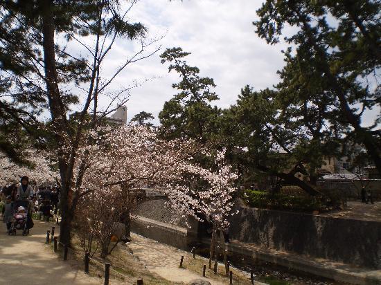Shukugawa Park: 公園
