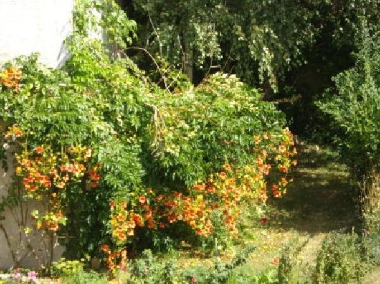 Le Beaupassant : Jardin